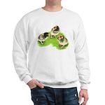 Brown Brabanter Chicks Sweatshirt