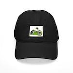 Creme Brabanter Chicks Black Cap