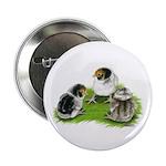 Creme Brabanter Chicks Button