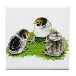 Creme Brabanter Chicks Tile Coaster