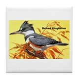 Belted Kingfisher Bird Tile Coaster