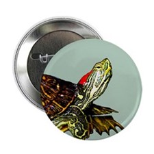 "Sassy Red Eared Slider Turtle 2.25"" Button (10 pac"