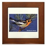 Blackburnian Warbler Bird Framed Tile