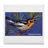 Blackburnian Warbler Bird Tile Coaster