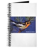 Blackburnian Warbler Bird Journal