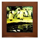 King Penguins Framed Tile