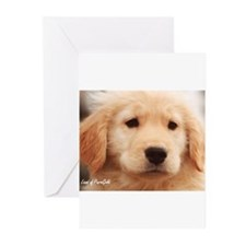 "Golden Retriever ""Teddy Puppy Pose"" - 6 Cards Gree"