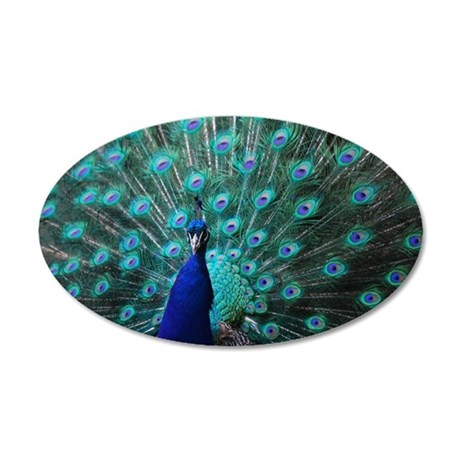 Peacock 35x21 Oval Wall Decal