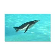 Penguin Swimming Underwater Car Magnet 20 x 12