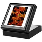 Fall Foliage - Keepsake Box