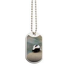 Brown and White Skunk Dog Tags