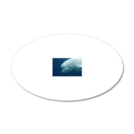 White Whale 20x12 Oval Wall Decal