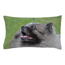 Fluffy Keeshond Pillow Case