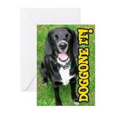 Belated Birthday Doggone Greeting Cards (Pk Of 10)