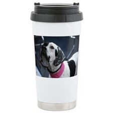 White and Black Pointer Travel Mug