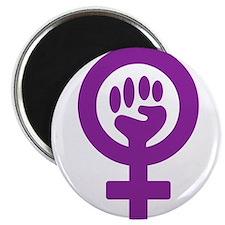 FEMINIS Magnets