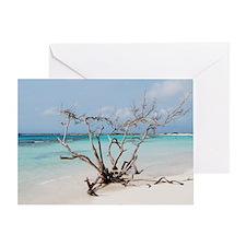 Baby Beach in Aruba Greeting Card