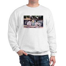 Brown Pelican Bird Sweatshirt