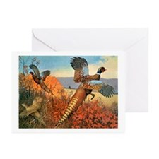Pheasant Bird Greeting Cards (Pk of 10)