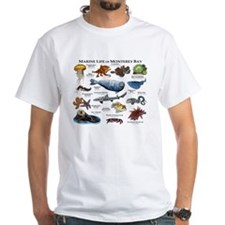 Marine Life of Monterey Bay Shirt