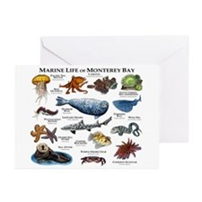 Marine Life of Monterey Greeting Cards (Pk of 20)