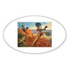 Pheasant Bird Oval Decal