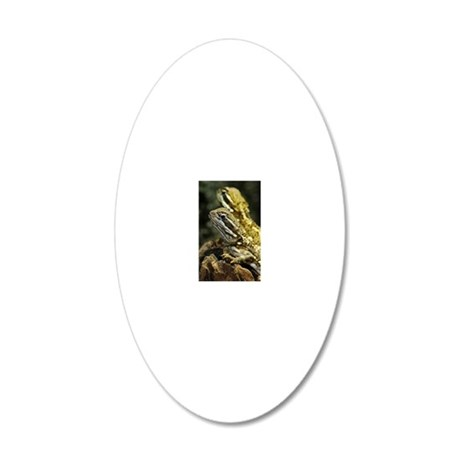 Bartagame Exotic Animal 20x12 Oval Wall Decal