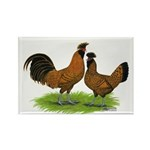 Gold Brabanter Chickens Rectangle Magnet (100 pack