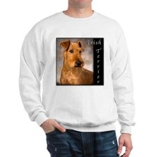 Irish Terrier Jumper