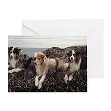WET DOG Greeting Card