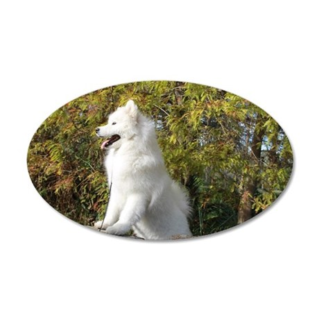 Fall Samoyed 35x21 Oval Wall Decal