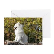 Fall Samoyed Greeting Card