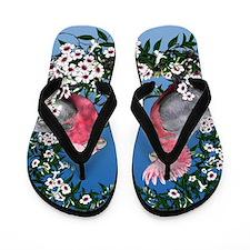 Galah Flip Flops
