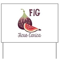 Fig Ficus Carica Yard Sign