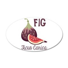 Fig Ficus Carica Wall Decal