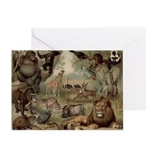Vintage Jungle Greeting Cards