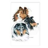 Sheltie Portraits Postcards (Package of 8)
