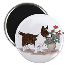 Brindle Cardigan Corgi Magnets (10 pack)