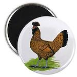 Gold Brabanter Hen Magnet