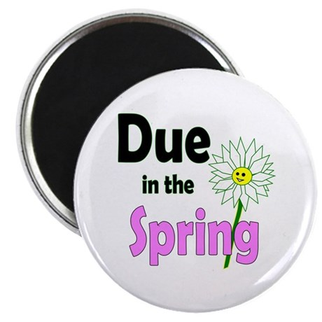 "Due in Spring 2.25"" Magnet (100 pack)"