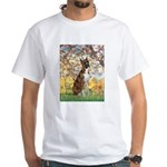 Spring with a Boxer White T-Shirt
