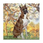 Spring with a Boxer Tile Coaster