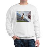 Creation...& Brindle Sweatshirt