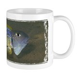 Ochrogenys Mug
