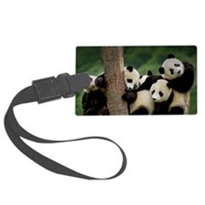 Panda Babies Luggage Tag