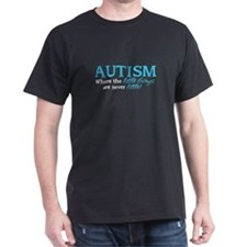 Autism Little Things T-Shirt