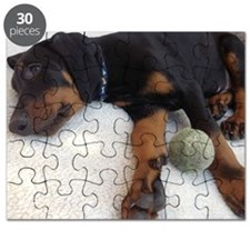 Dobermann puppy Puzzle