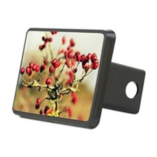 Red berries Hitch Cover