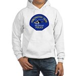 Huntington Park Air Support Hooded Sweatshirt