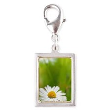 Beautiful Spring daisies Silver Portrait Charm
